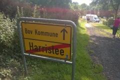 Haraldsvej