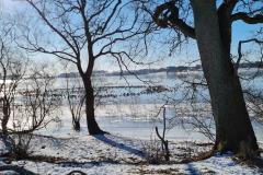 feb13-Tystrup-sø